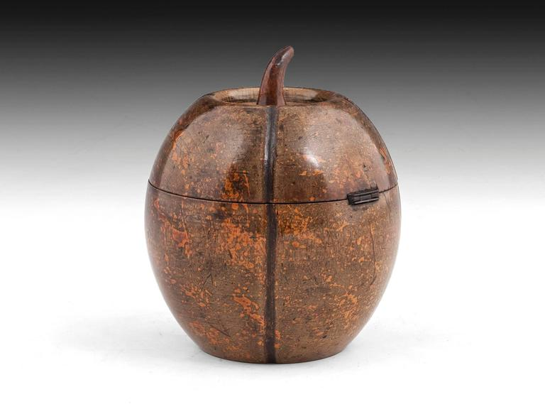 German Antique Melon Fruitwood Tea Caddy For Sale