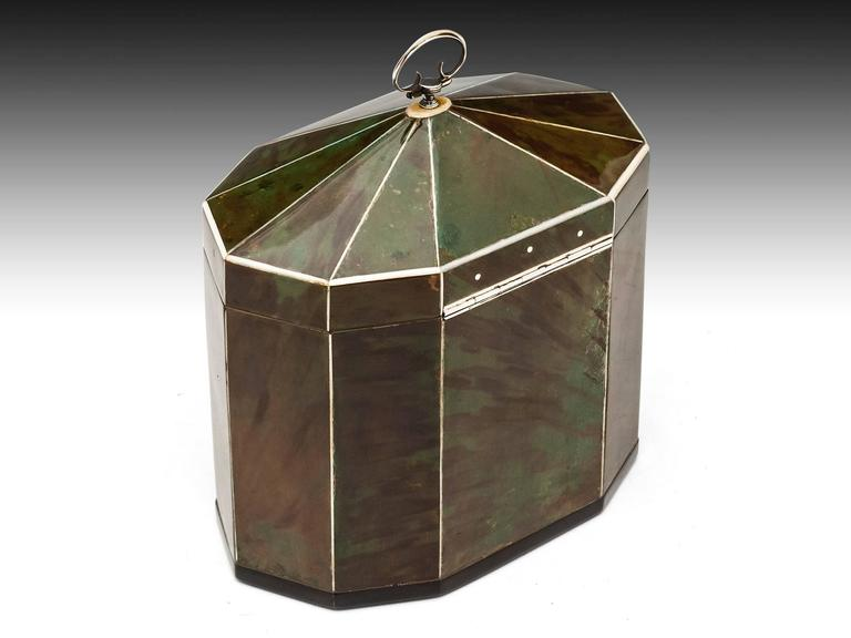 19th Century Green Tortoiseshell Tea Caddy For Sale