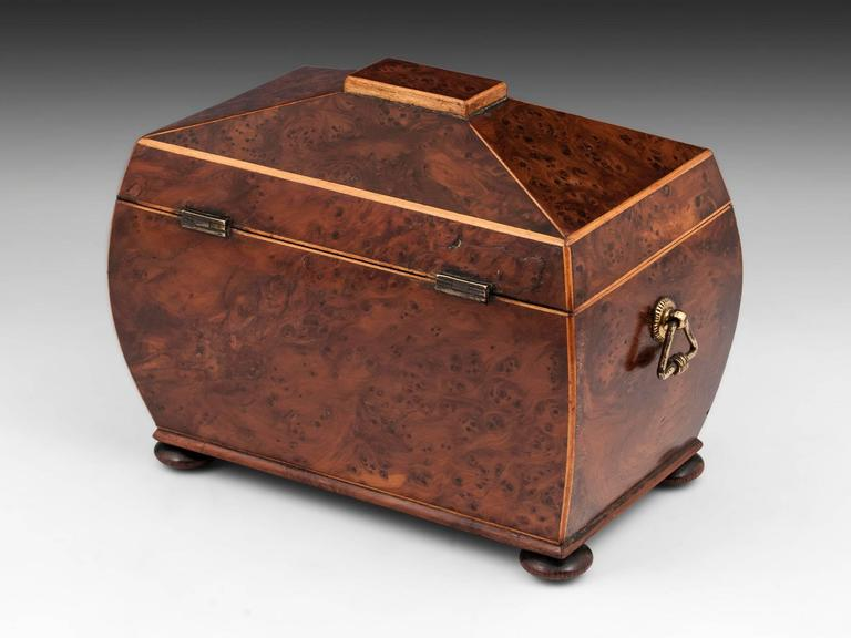 Antique Regency Bombe Shaped Burr Yew Tea Caddy 4