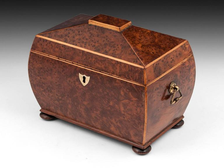 Antique Regency Bombe Shaped Burr Yew Tea Caddy 3