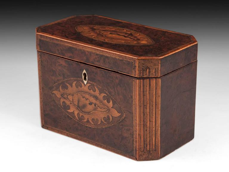 Antique Georgian Burr Yew Tea Caddy In Good Condition For Sale In Northampton, United Kingdom
