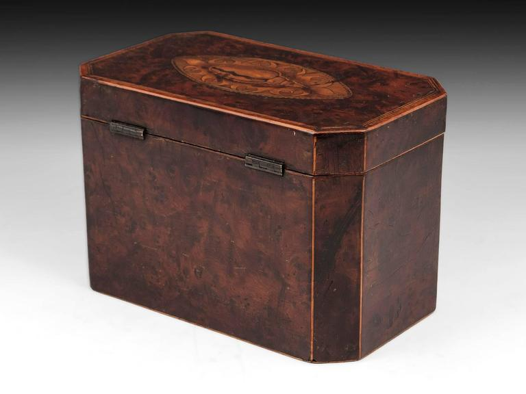 18th Century and Earlier Antique Georgian Burr Yew Tea Caddy For Sale