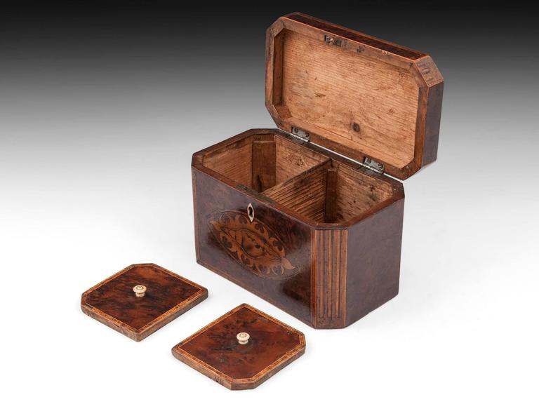 Antique Georgian Burr Yew Tea Caddy For Sale 1