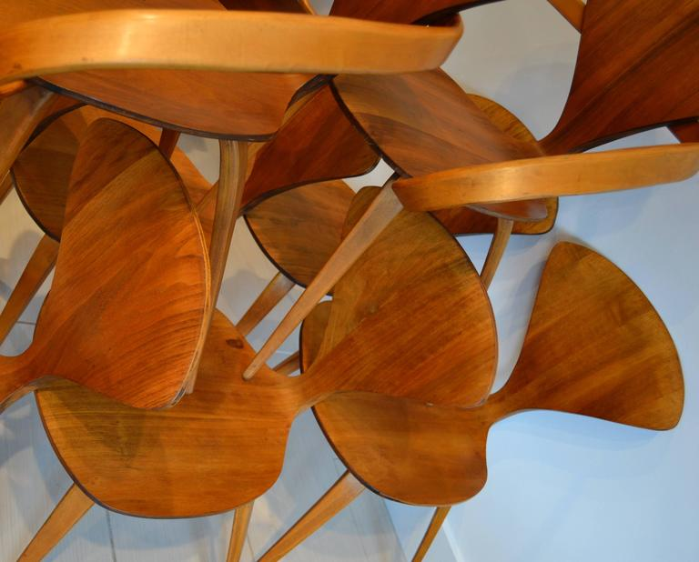 set of eight norman cherner for plycraft walnut and beech dining chairs 1950s 3