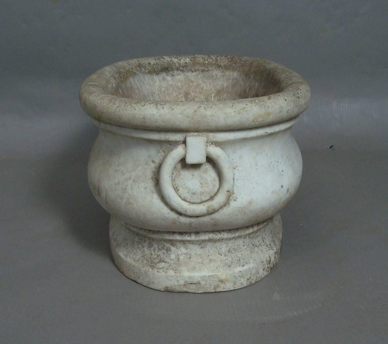 A rare, early 19th century Carrara marble cistern of elongated oval form, the top with a circular moulding over the bold ogee shaped body with carved rings to either end to simulate handles; raised on a cavetto moulded plinth. Could be used as a