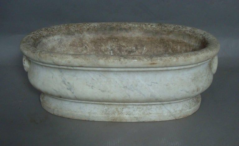 Early 19th Century 19th Century Carrera Marble Cistern For Sale