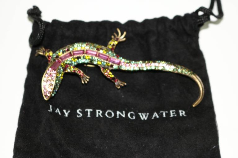 Vintage Jay Strongwater Salamander Brooch-Makes A Great ...