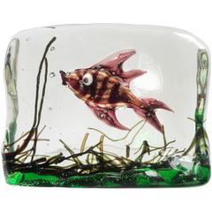 Murano Copper Aventurine Fish Italian Art Glass Aquarium Paperweight Sculpture