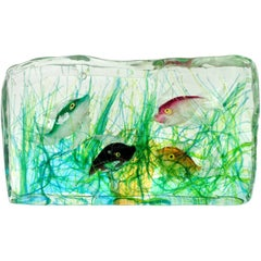 Cenedese Murano Green Pink Orange Black Fish Italian Art Glass Aquarium Block