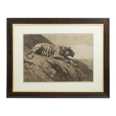 Herbert Dicksee Tiger Engraving, 'The Watcher on the hill', 1904 Frost and Reed
