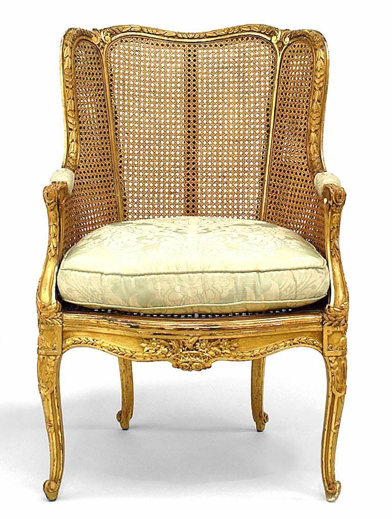 French Louis XV style (19th century) gilt and caned panel bergere armchair with gold floral seat cushion.