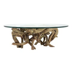 Walnut Root Coffee Table