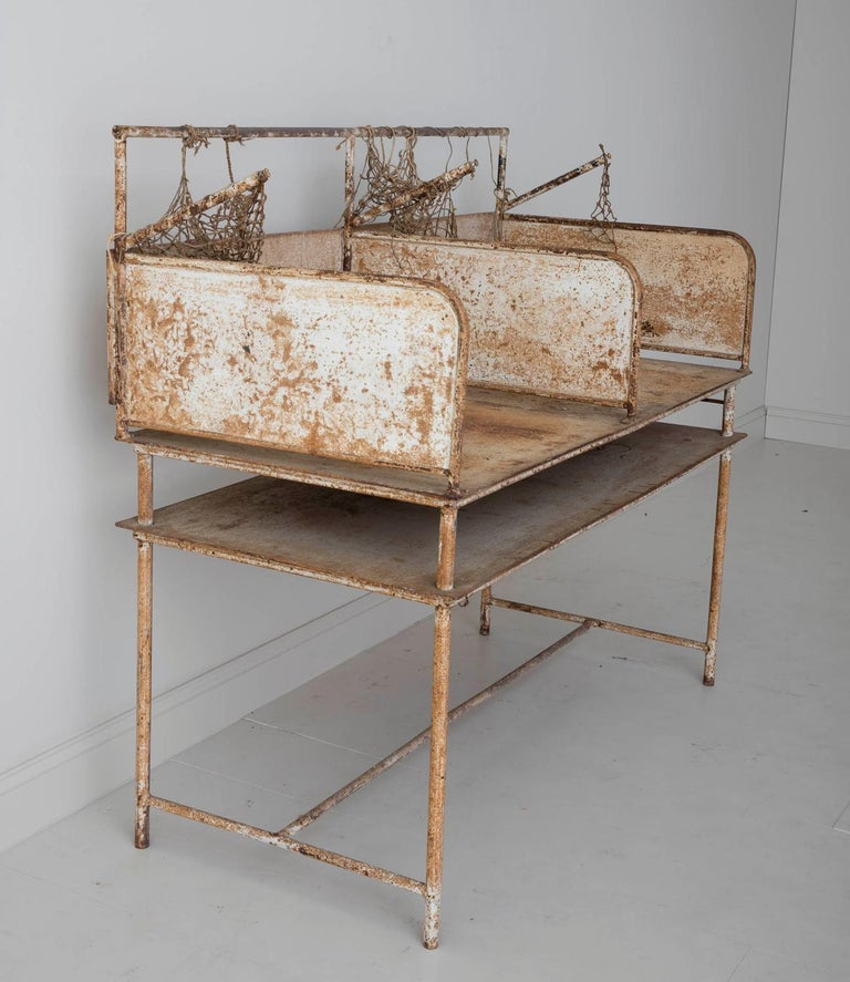 Very unique early 20th century iron oyster shucking table from the east coast with some of the original netting remaining. This piece has original paint in a soft cream wearing to reveal the iron frame and some gentle rust. This piece would serve