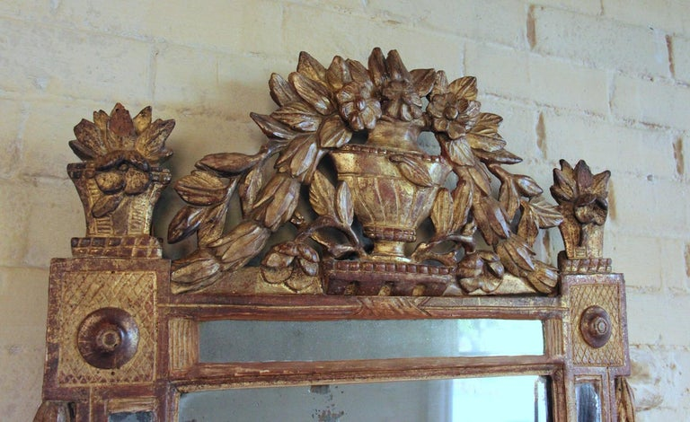 Hand-Carved 18th Century French Louis XVI Period Richly Carved Giltwood Mirror For Sale