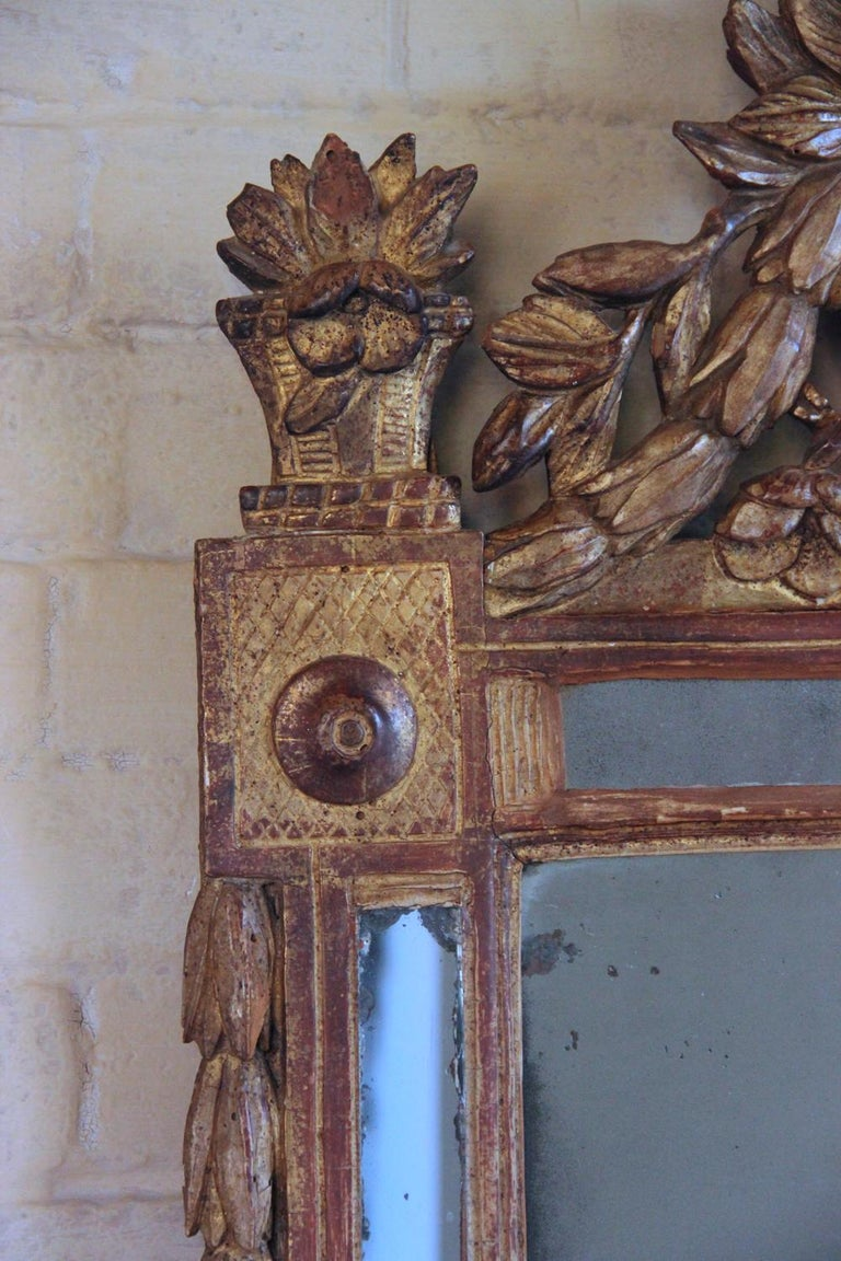 18th Century and Earlier 18th Century French Louis XVI Period Richly Carved Giltwood Mirror For Sale
