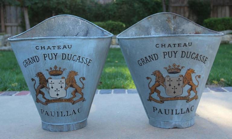 French Zinc Grape Hods, 19th Century Antique In Excellent Condition For Sale In Wichita, KS