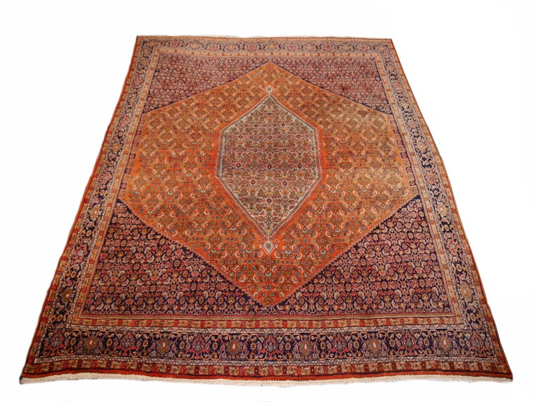 Great Kurdish Persian Bidjar rug. Very heavy and solid rug, full pile condition. All edges original and perfect.