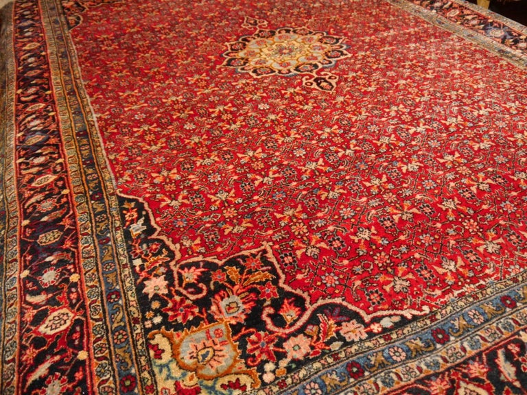 Hand-Knotted Semi Antique Persian Rug from Bidjar Mid-Century For Sale