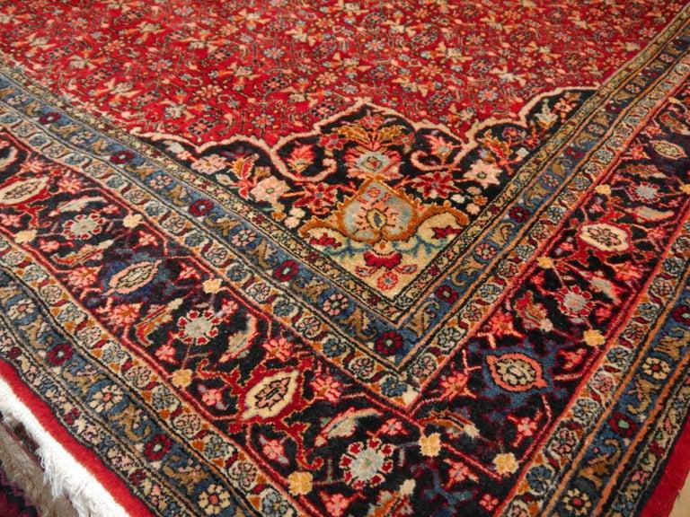 Beautiful persian Bidjar rug, made 1950-1960. Very good condition.
