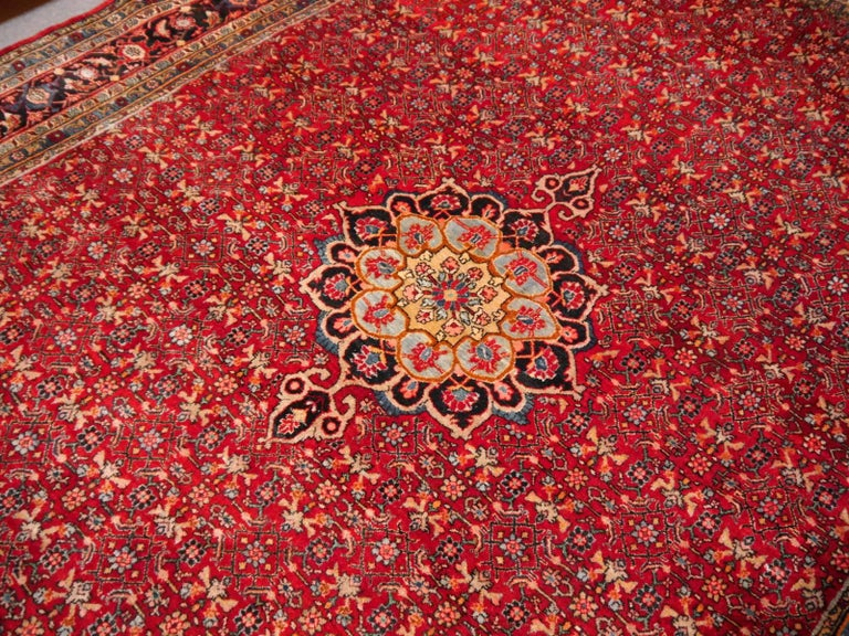 Wool Semi Antique Persian Rug from Bidjar Mid-Century For Sale