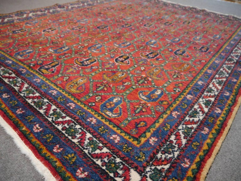 Persian Rug Afshari Vintage Tribal Carpet Red and Blue, Mid-20th Century In Excellent Condition For Sale In Lohr, Bavaria, DE