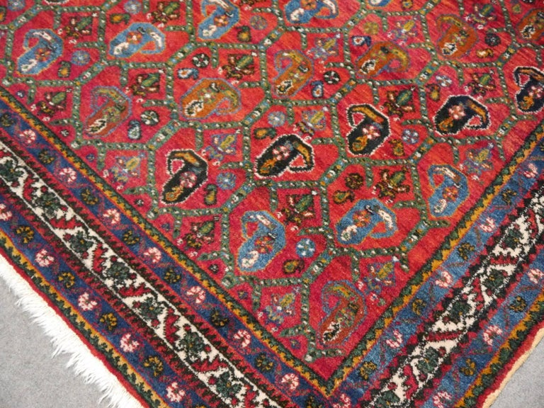 Persian Rug Afshari Vintage Tribal Carpet Red and Blue, Mid-20th Century For Sale 3