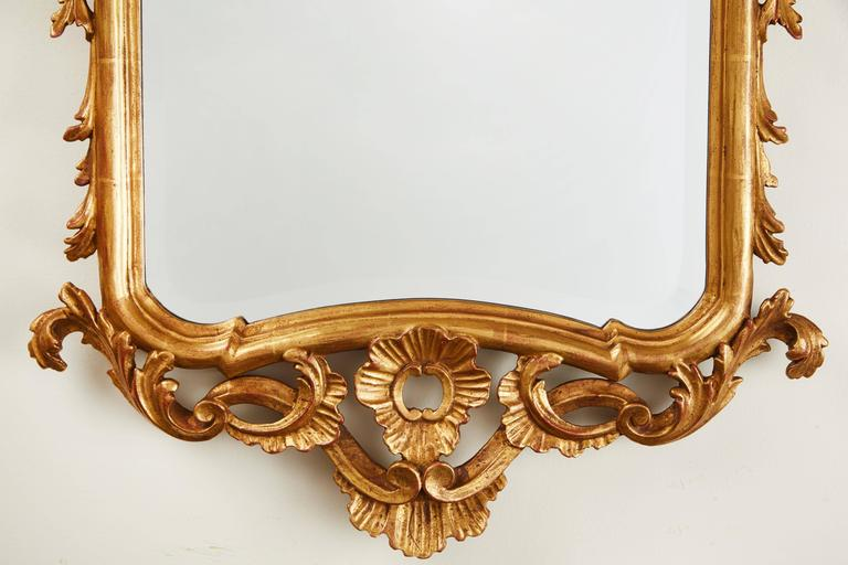 19th Century French Gilded Mirror 4