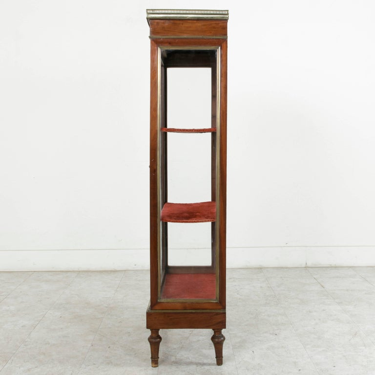 19th Century French Louis XVI Mahogany and Bronze Vitrine, Display Cabinet, Case For Sale 1