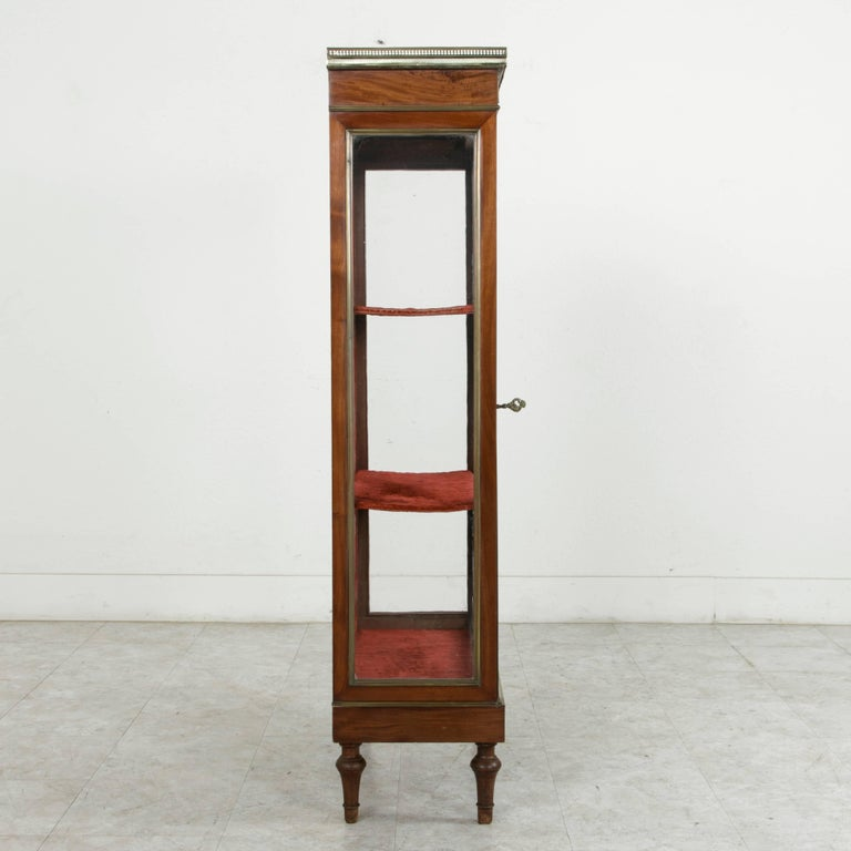 19th Century French Louis XVI Mahogany and Bronze Vitrine, Display Cabinet, Case For Sale 3
