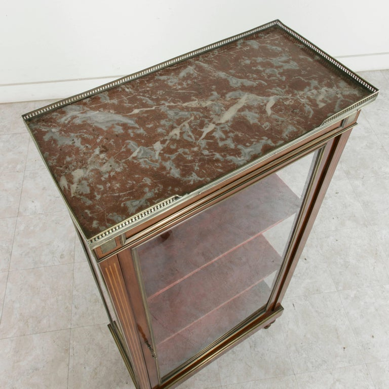 19th Century French Louis XVI Mahogany and Bronze Vitrine, Display Cabinet, Case For Sale 4