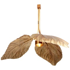 Rare Huge Rhubarb Leaf Brass Chandelier by Tommaso Barbi