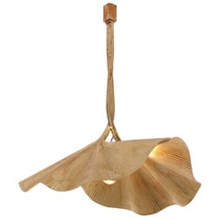 1 of 2 Rare Huge Ginkgo Leaf Brass Chandelier by Tommaso Barbi