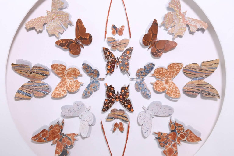American Antique Marbled End Paper Butterflies For Sale
