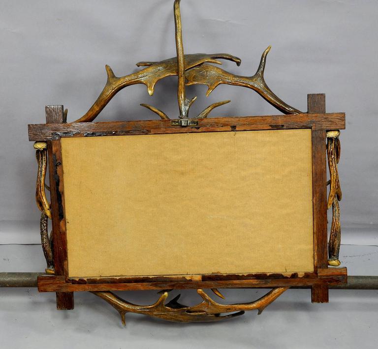 Deer Antler Picture Frames For Sale - dinocro.info