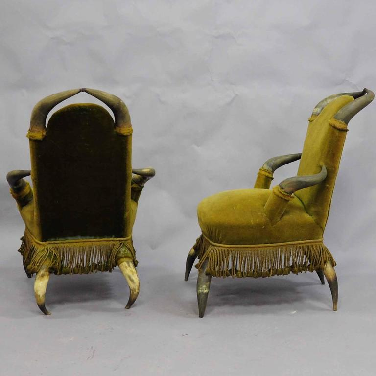 Austrian Four Antique Bull Horn Chairs, circa 1870 For Sale