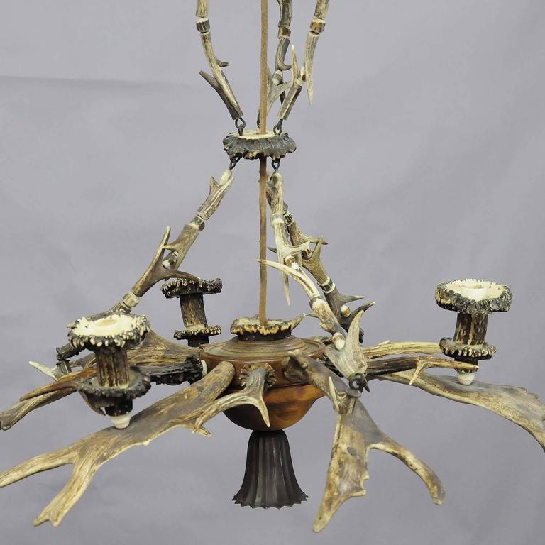 Classy Antique Black Forest Antler Chandelier For Sale At