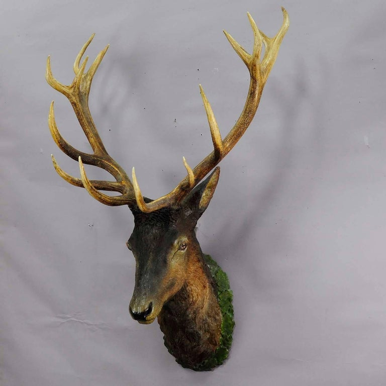 Great Lifesize Black Forest Stag Head Made Of Plaster Circa 1890 For 3