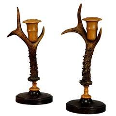 Pair of Rustic Candleholders Made of Deer Antlers