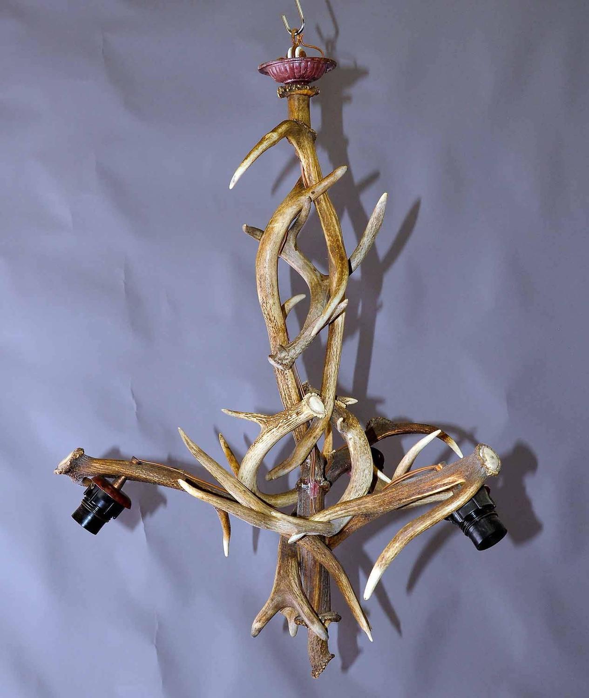 Shapely Antique Black Forest Antler Chandelier For Sale At