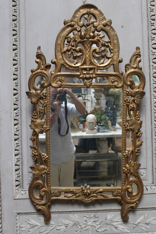 A French Regence style small scaled gilt wood mirror.