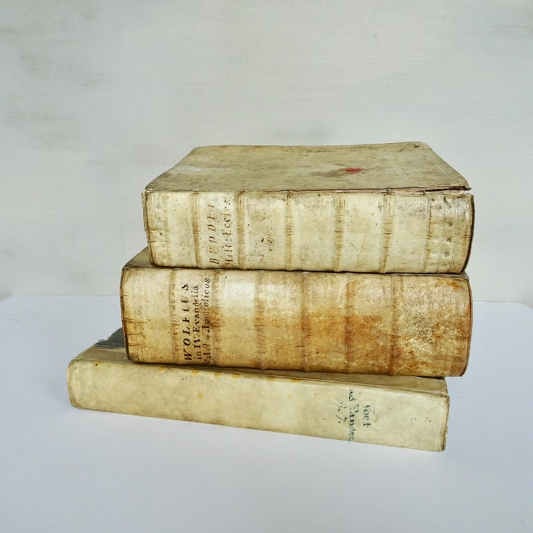 A nice collection of vellum books from the 17th and 18th century in a set of three.