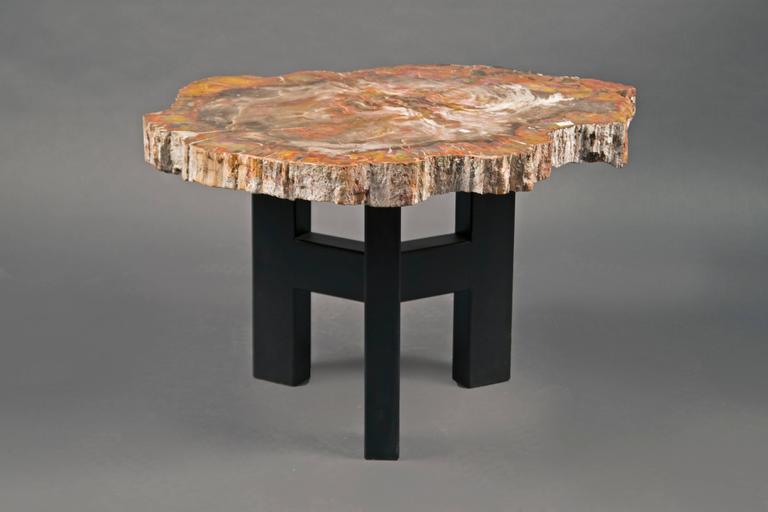 Petrified Wood Coffee Table, Belgium, circa 1970s 2