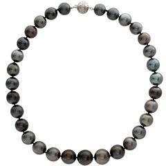 South Sea Black Pearl Necklace