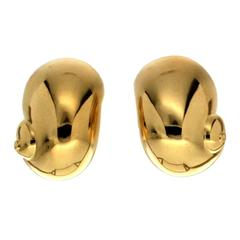High Polish Nautilus Gold Earrings