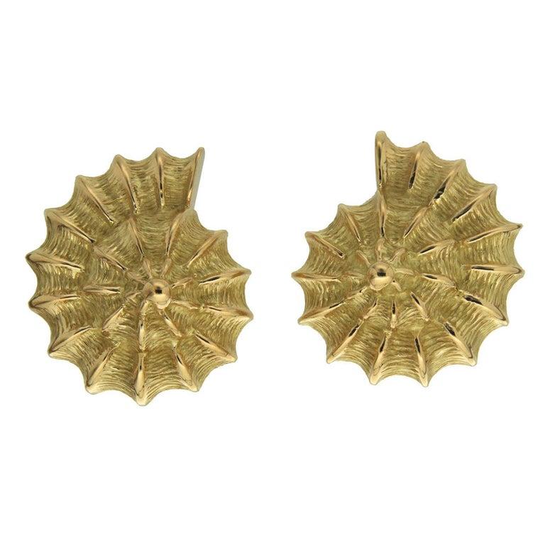 Plain Gold Scallop Shell Earrings