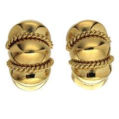 High Polish Small Gold Shrimp Earrings