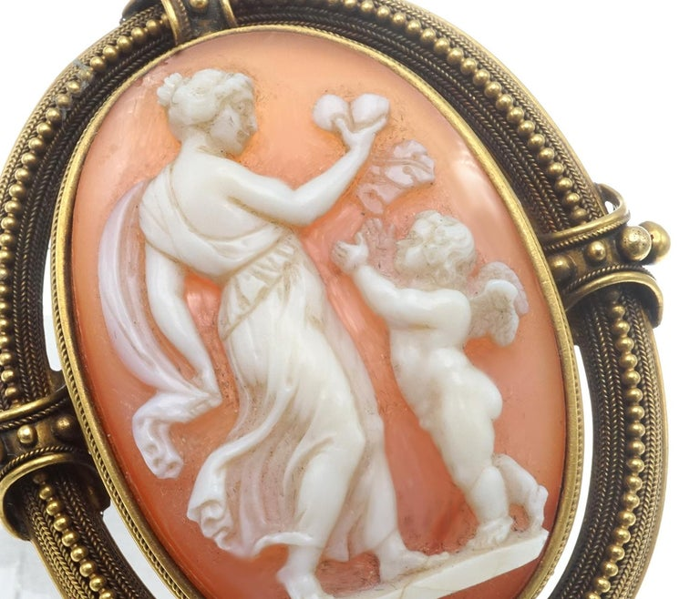 Shell Cameo and Gold Brooch For Sale 1