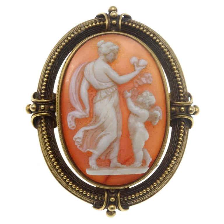 Shell Cameo and Gold Brooch For Sale