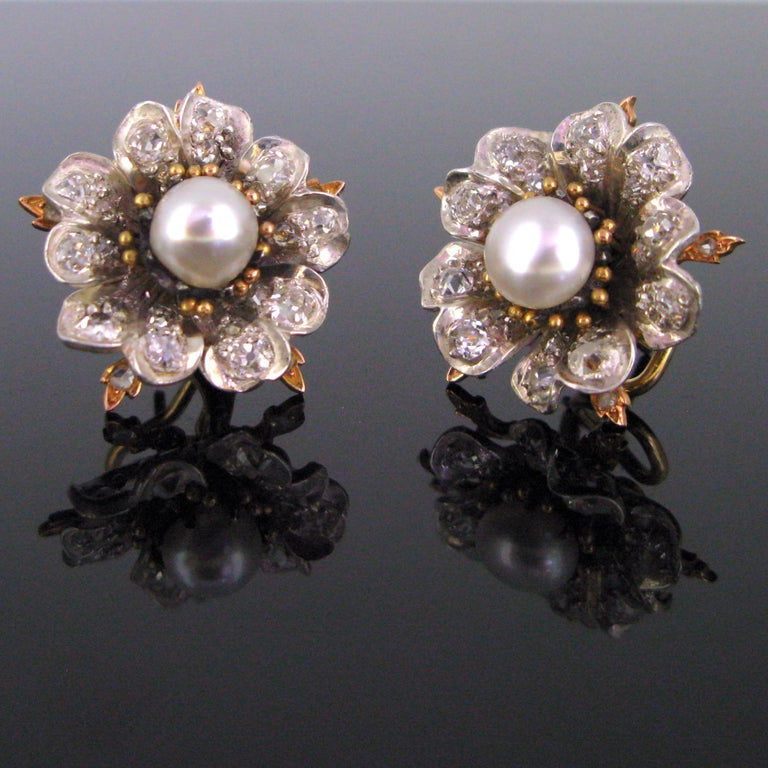 These flowers earrings are adorned in the centre with a natural saltwater pearl. They have a very good orient and beautiful cream colour. The petals are made in silver and each of them is set with old cut diamonds. The pearls come with the GCS