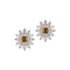 Brown Diamond Stud Earrings with Detachable Pear Shaped Diamond Halo